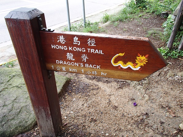 dragons back 2