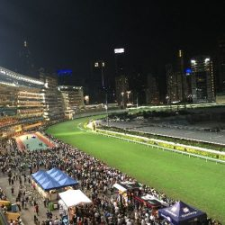 香港ナイト競馬はちょっと贅沢するのが正解